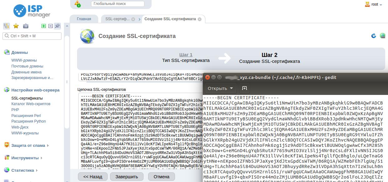 Установка ssl ispmanager lite продвижение сайта оптимизация seo